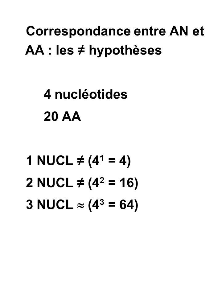 GAMOW ATGCTGACTAGC AAACCCGGGTTT AATAAGAAC CCTCCGCCA GGTGGCGGA TTGTTCTTA 20 possibilités pour combiner 4 nucléotides pris 3 par 3 dans lesquelles l ordre n intervient pas  pas de codon stop  pas de codon d initiation
