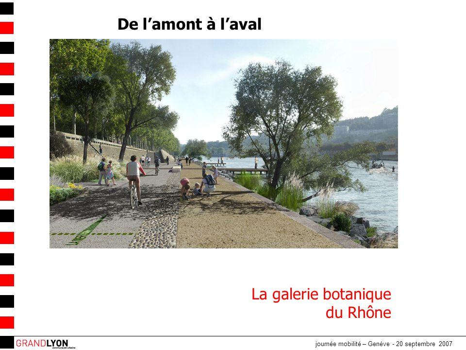 journée mobilité – Genève - 20 septembre 2007 La galerie botanique du Rhône De l'amont à l'aval
