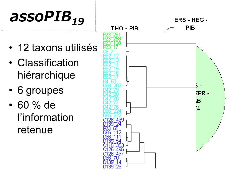 assoPIB 19 12 taxons utilisés Classification hiérarchique 6 groupes 60 % de l'information retenue