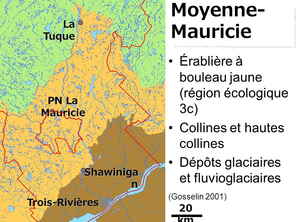Érablière à bouleau jaune (région écologique 3c) Collines et hautes collines Dépôts glaciaires et fluvioglaciaires (Gosselin 2001) Trois-Rivières Shawiniga n La Tuque PN La Mauricie 20 km Moyenne- Mauricie