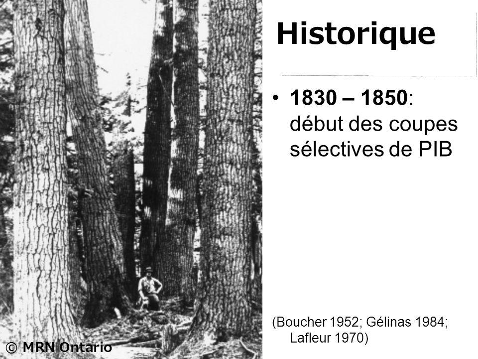 Historique 1830 – 1850: début des coupes sélectives de PIB © MRN Ontario (Boucher 1952; Gélinas 1984; Lafleur 1970)