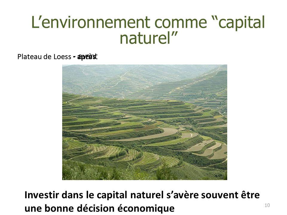 """Plateau de Loess - aprèsPlateau de Loess - avant 10 L'environnement comme """"capital naturel"""" Investir dans le capital naturel s'avère souvent être une"""