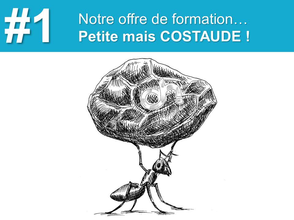 Une offre de formation… adaptée à tous types de profils #2 www.ohmyweb.fr Organisme de formation agrée certifié flexible et efficace !