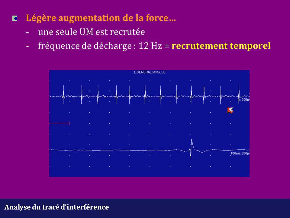 Analyse du tracé d'interférence Légère augmentation de la force… -une seule UM est recrutée - fréquence de décharge : 12 Hz = recrutement temporel
