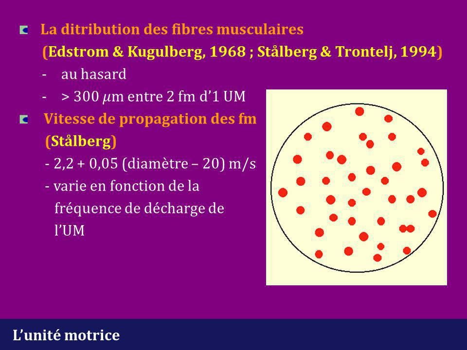 Analyse du tracé d'interférence Intervalle et fréquence initial (neuropathie) -intervalle initial 20 Hz 45 ms