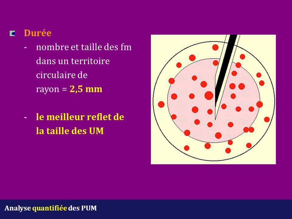 Durée -nombre et taille des fm dans un territoire circulaire de rayon = 2,5 mm - le meilleur reflet de la taille des UM Analyse quantifiée des PUM