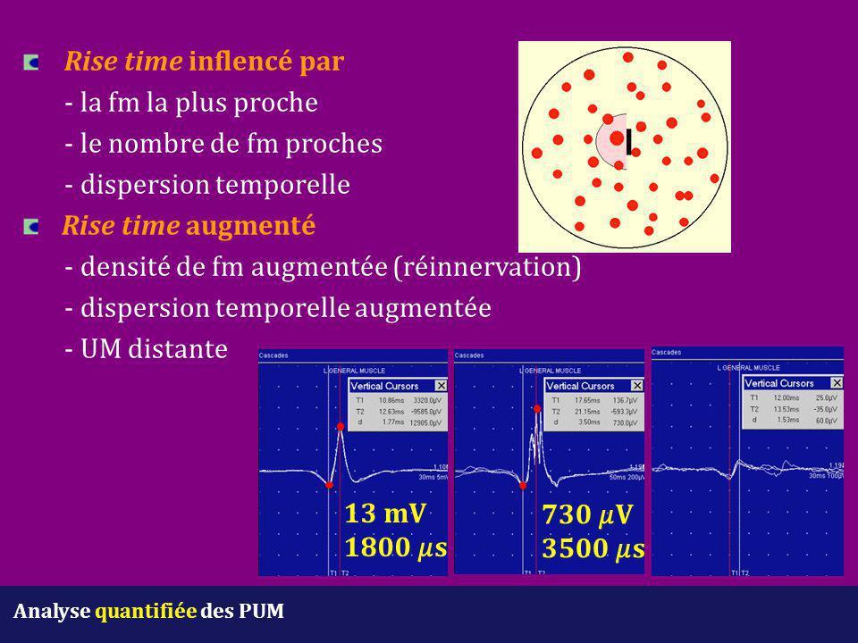 Rise time inflencé par - la fm la plus proche - le nombre de fm proches - dispersion temporelle Rise time augmenté - densité de fm augmentée (réinnerv