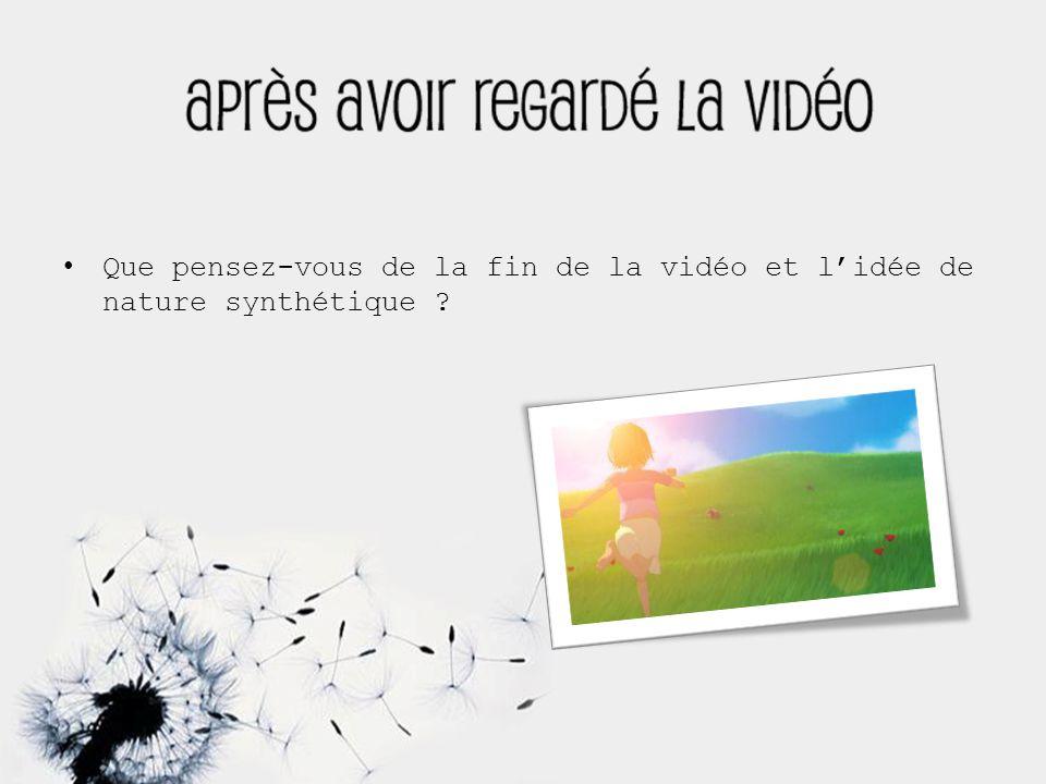 Que pensez-vous de la fin de la vidéo et l'idée de nature synthétique