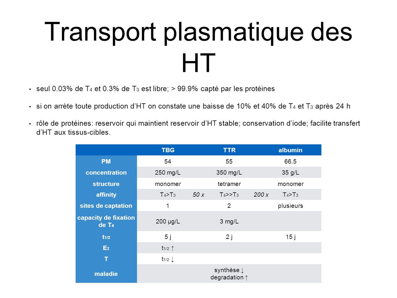 Transport plasmatique des HT seul 0.03% de T 4 et 0.3% de T 3 est libre; > 99.9% capté par les protéines si on arrète toute production d'HT on constate une baisse de 10% et 40% de T 4 et T 3 après 24 h rôle de protéines: reservoir qui maintient reservoir d'HT stable; conservation d'iode; facilite transfert d'HT aux tissus-cibles.