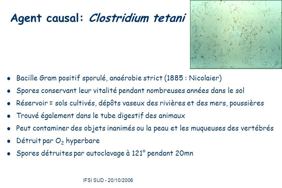 IFSI SUD - 20/10/2006 19 Tétanos céphalique Rare Suite à trauma crânien ou cervical Évolution vers forme généralisée Dysphagie, trismus, paralysie des nerfs craniens – Nerf facial surtout