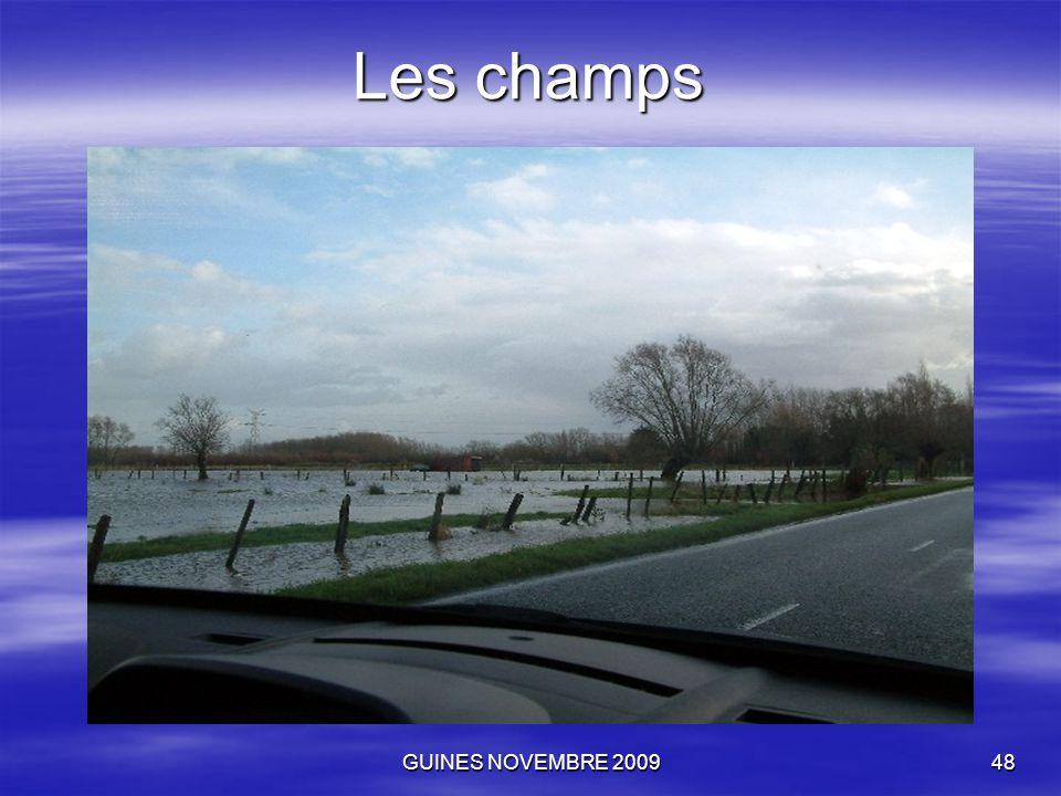 GUINES NOVEMBRE 200948 Les champs