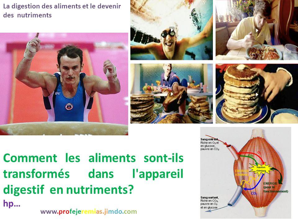Dissection de souris www.profejeremias.jimdo.com http://www.ac- rennes.fr/pedagogie/svt/applic/dissect/souris/souris02.htm