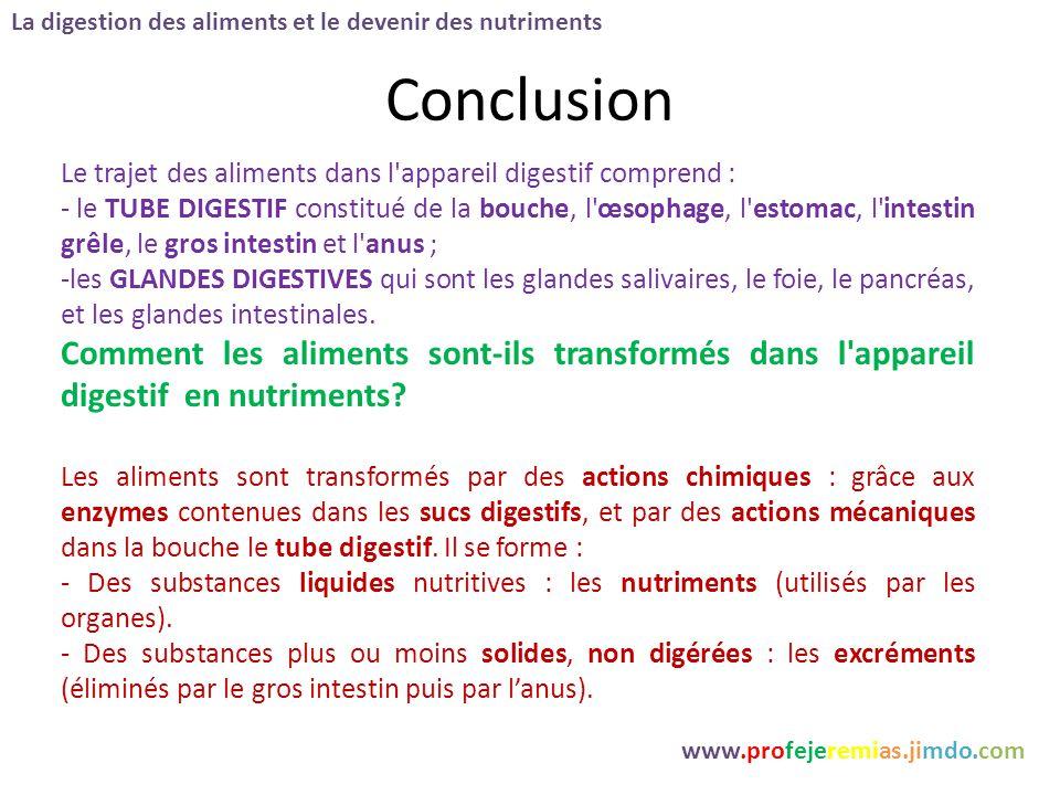 Conclusion La digestion des aliments et le devenir des nutriments www.profejeremias.jimdo.com Le trajet des aliments dans l'appareil digestif comprend