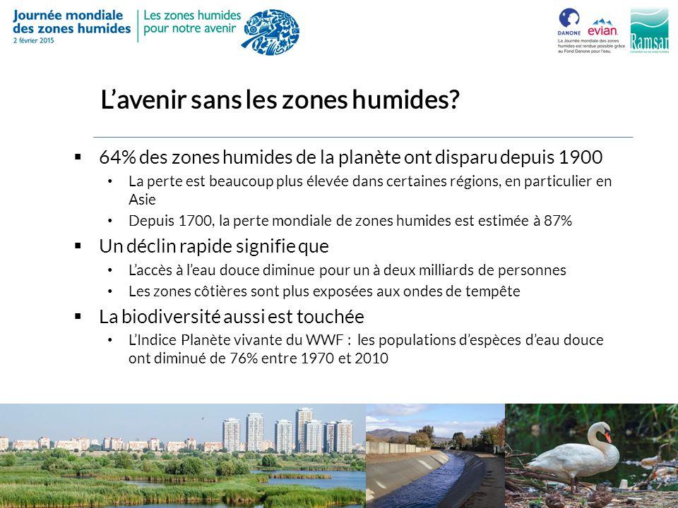 L'Indice d'étendue des zones humides  L'indice de déclin des zones humides, conjointement parrainé par Ramsar  A observé un échantillon de plus de 1000 zones humides à l'échelon mondial entre 1970 et 2008  La perte moyenne d'étendue mesurée dans cette période : 40%  Les variations d'un site à l'autre sont considérables