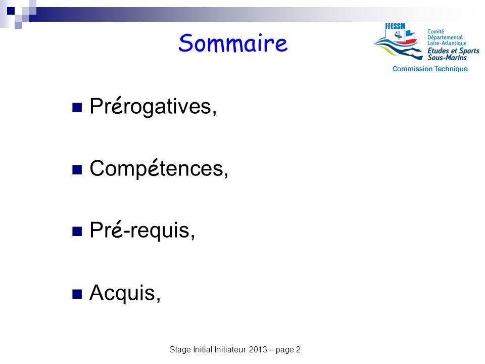 Stage Initial Initiateur. 2013 – page 2 Sommaire Pr é rogatives, Comp é tences, Pr é -requis, Acquis,
