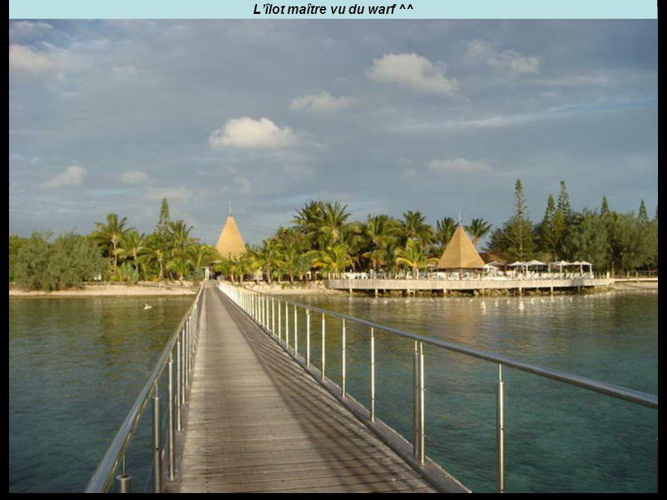 L'îlot maître vu du warf ^^