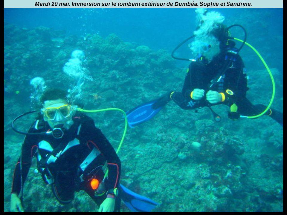 Mardi 20 mai. Immersion sur le tombant extérieur de Dumbéa. Sophie et Sandrine.