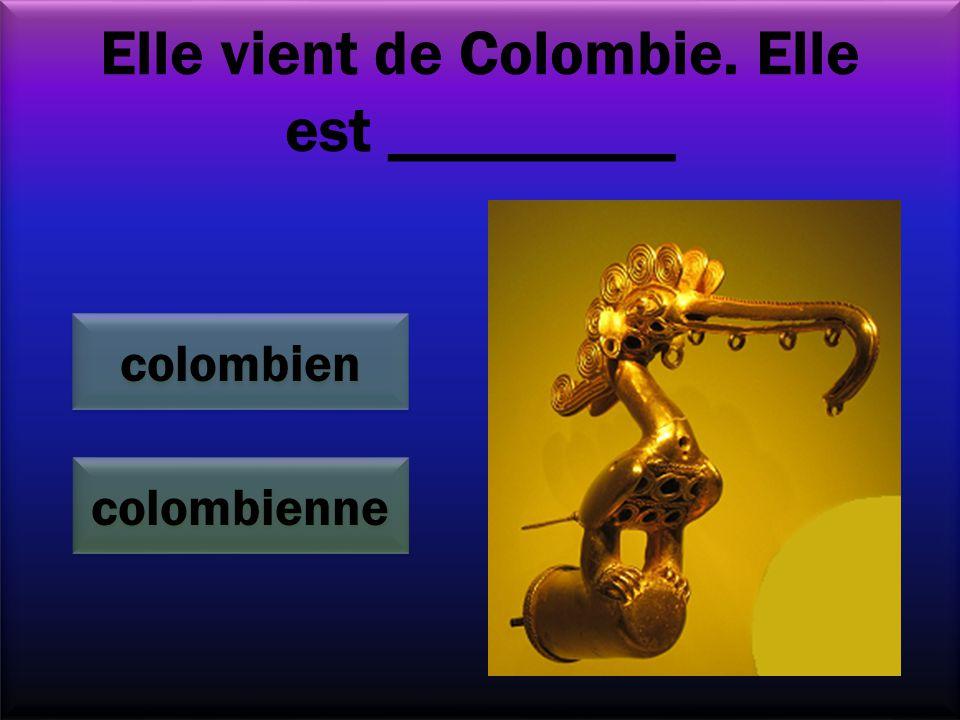 Elle vient de Colombie. Elle est _________ colombienne colombien