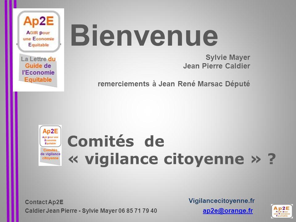 Comités de « vigilance citoyenne » .