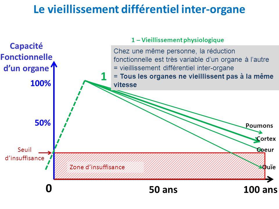 Le vieillissement différentiel inter-organe 100 ans50 ans 0 Zone d'insuffisance Seuil d'insuffisance Capacité Fonctionnelle d'un organe 100% 50% Poumo