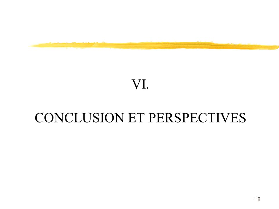 18 VI. CONCLUSION ET PERSPECTIVES