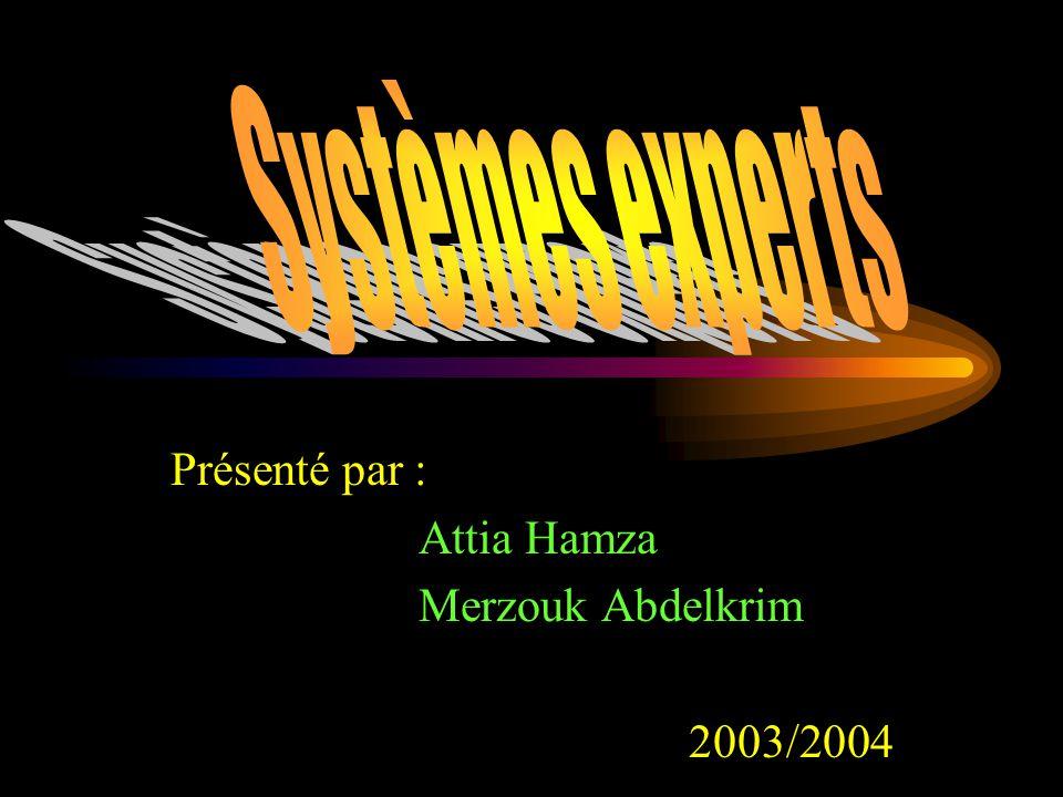 Présenté par : Attia Hamza Merzouk Abdelkrim 2003/2004