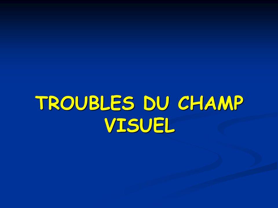 TROUBLES DU CHAMP VISUEL