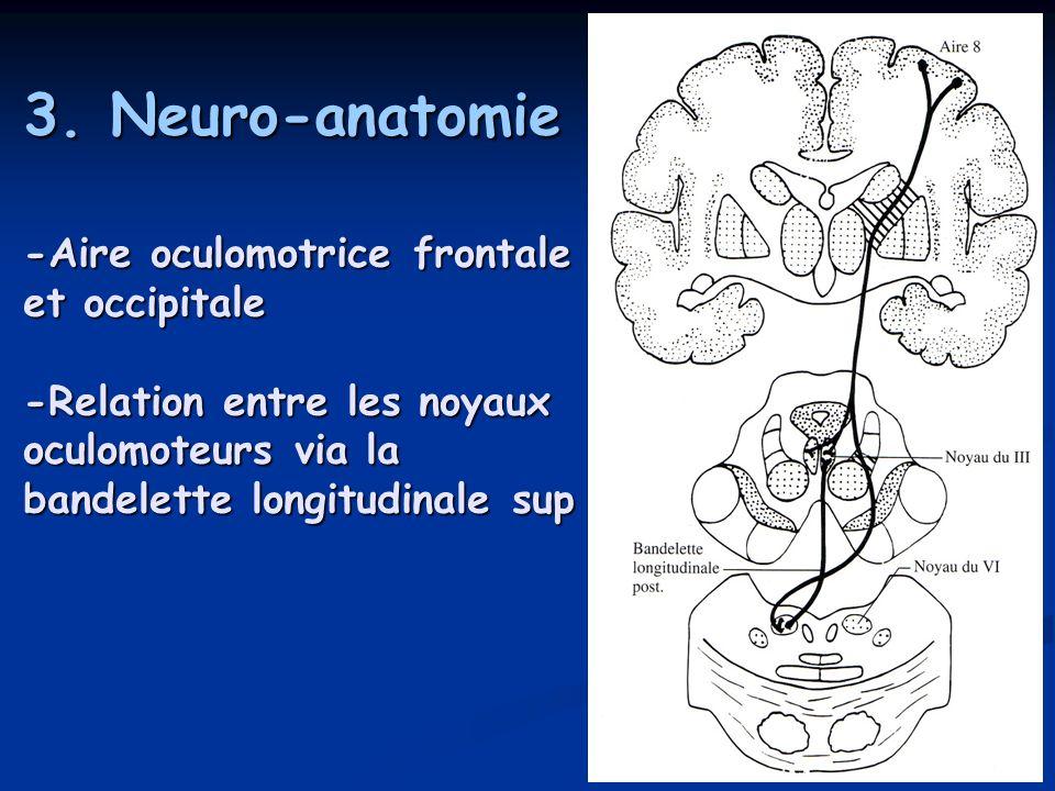3. Neuro-anatomie -Aire oculomotrice frontale et occipitale -Relation entre les noyaux oculomoteurs via la bandelette longitudinale sup