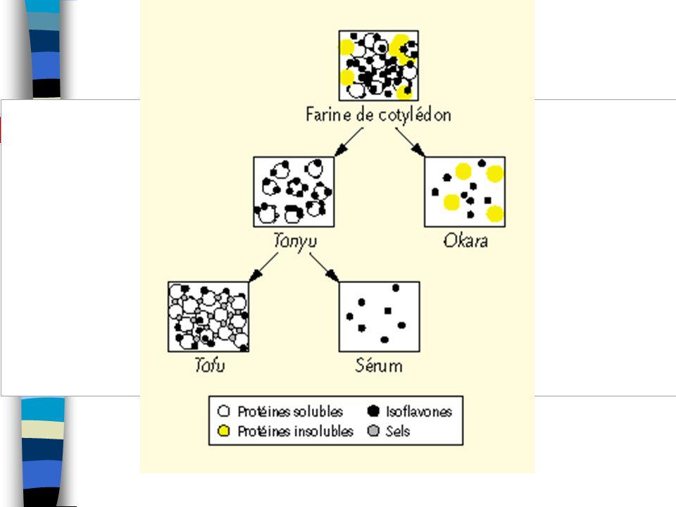 Figure 3. Hypothèse concernant le flux des isoflavones au cours de la production de tonyu et de tofu (d'après Wang et Murphy [106]).
