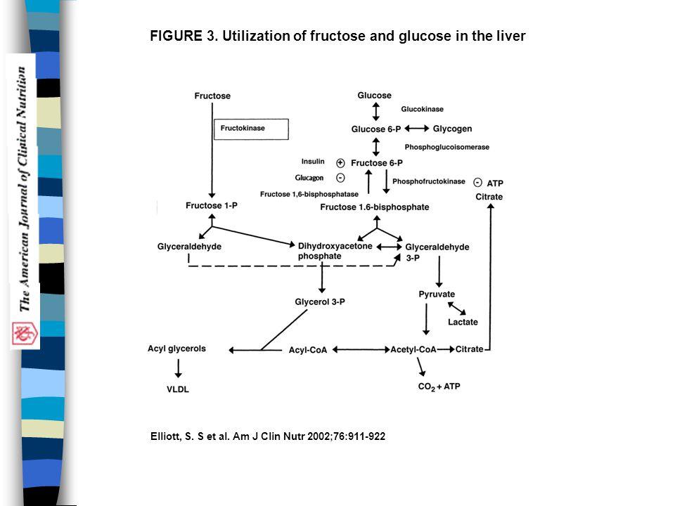 Elliott, S. S et al. Am J Clin Nutr 2002;76:911-922 FIGURE 3. Utilization of fructose and glucose in the liver