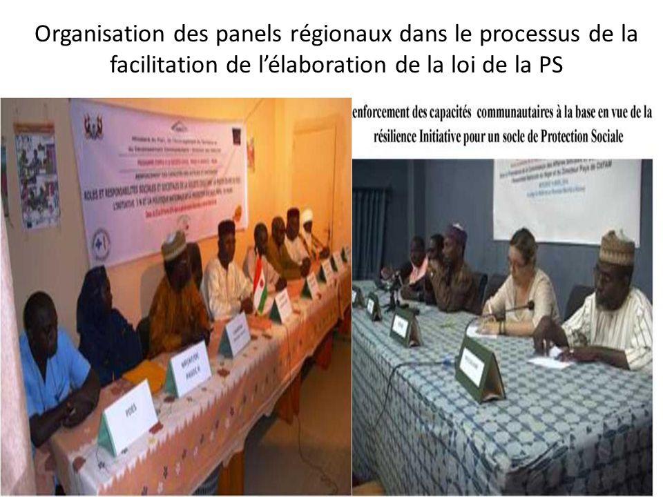 Organisation des panels régionaux dans le processus de la facilitation de l'élaboration de la loi de la PS