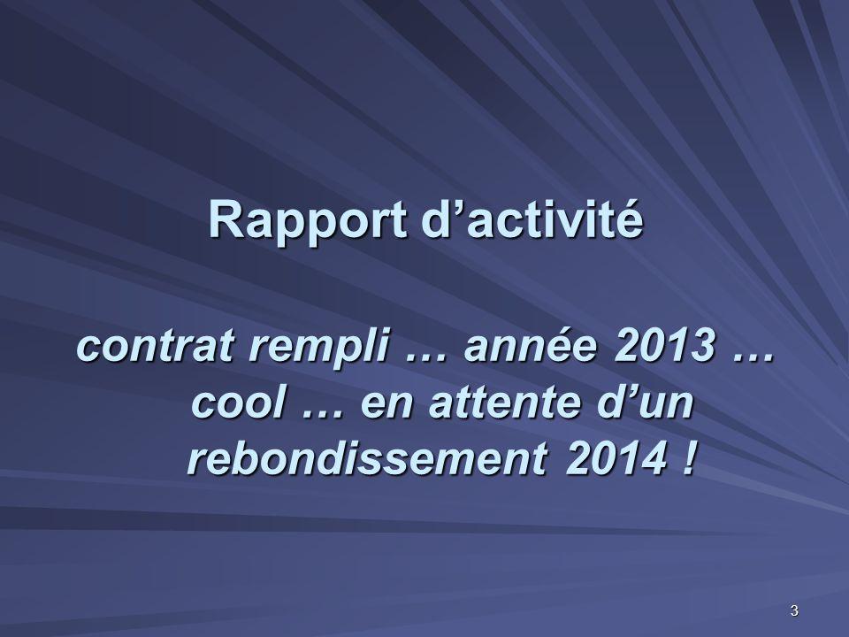 Rapport d'activité contrat rempli … année 2013 … cool … en attente d'un rebondissement 2014 ! 3