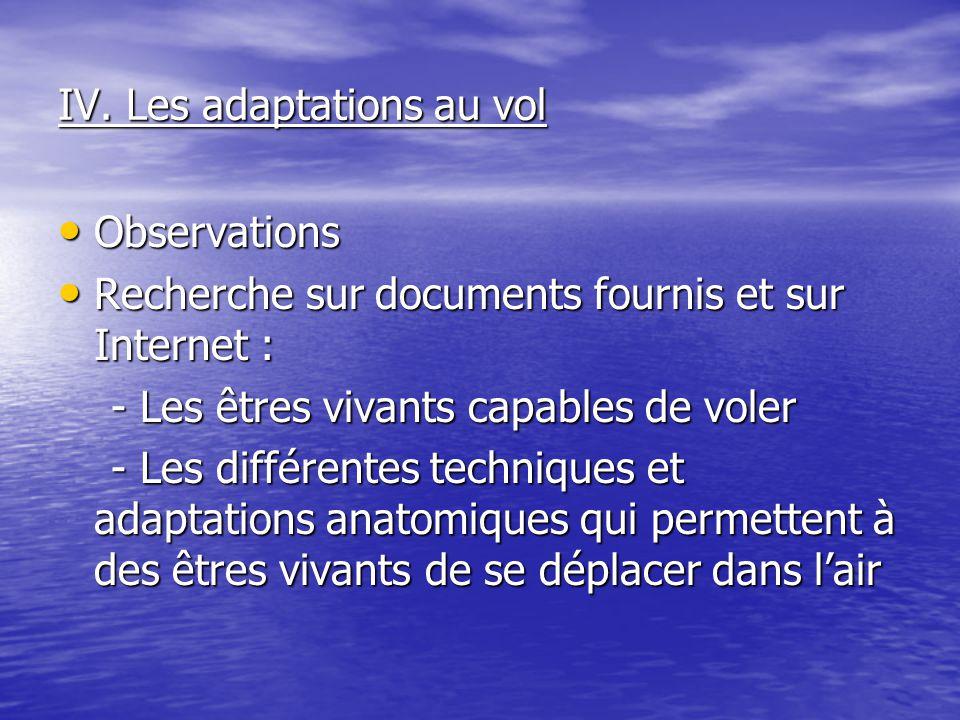 IV. Les adaptations au vol Observations Observations Recherche sur documents fournis et sur Internet : Recherche sur documents fournis et sur Internet