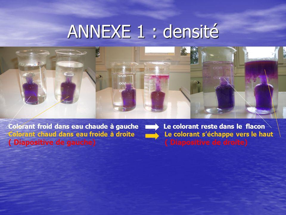 ANNEXE 1 : densité Colorant froid dans eau chaude à gauche Le colorant reste dans le flacon Colorant chaud dans eau froide à droite Le colorant s'échappe vers le haut ( Diapositive de gauche) ( Diapositive de droite)