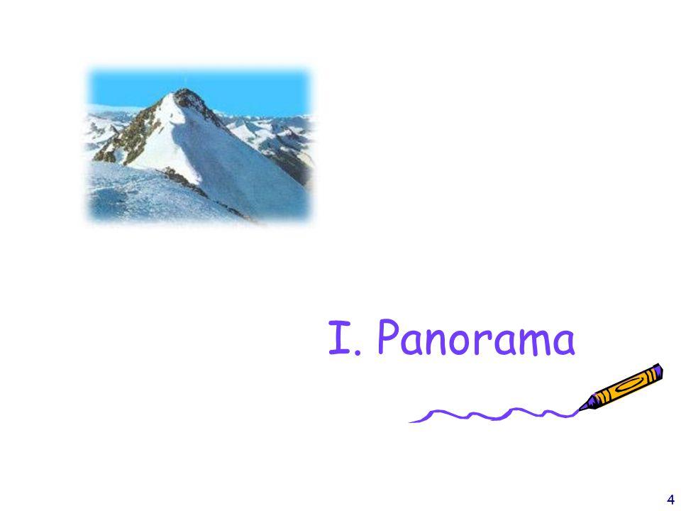4 I. Panorama