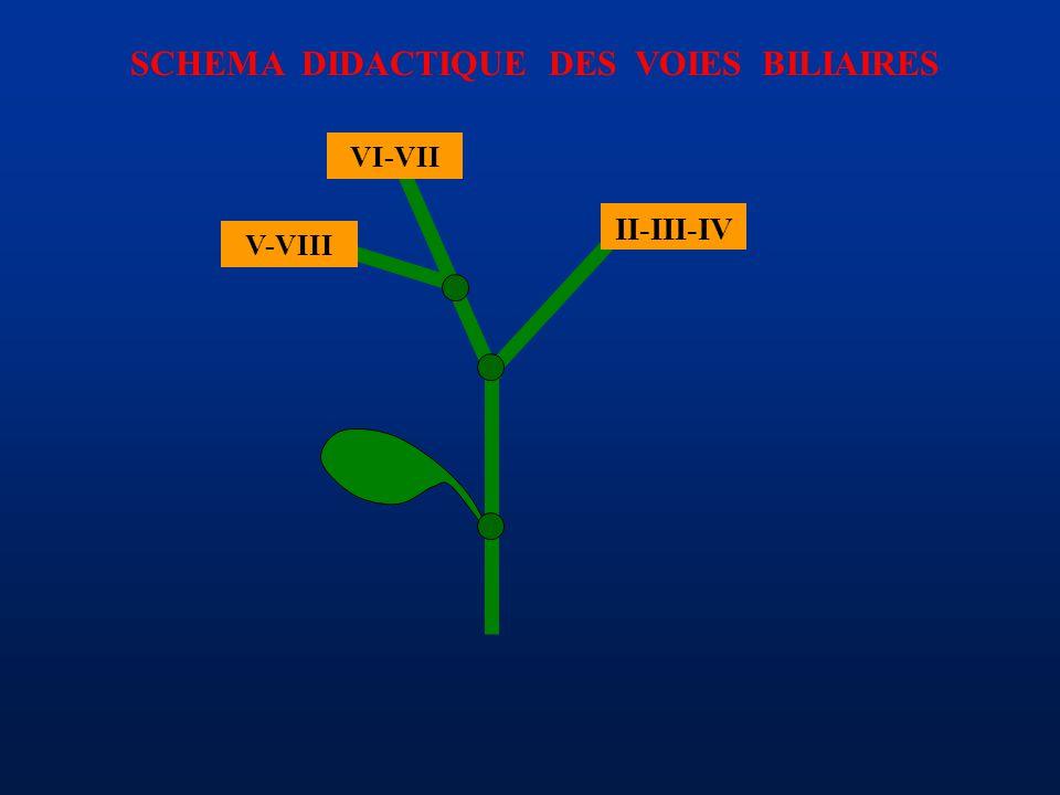 SCHEMA DIDACTIQUE DES VOIES BILIAIRES II-III-IV VI-VII V-VIII