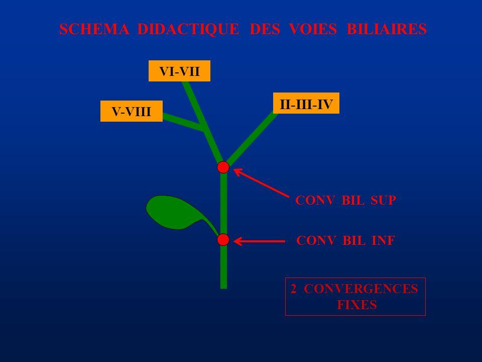 SCHEMA DIDACTIQUE DES VOIES BILIAIRES CONV BIL SUP II-III-IV VI-VII V-VIII CONV BIL INF 2 CONVERGENCES FIXES