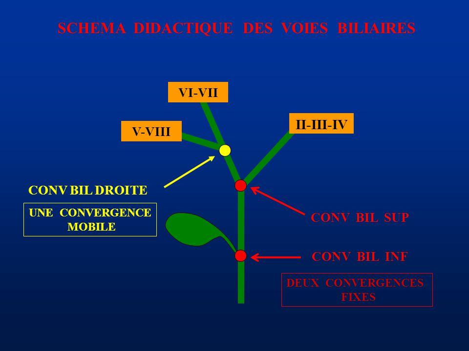 SCHEMA DIDACTIQUE DES VOIES BILIAIRES CONV BIL SUP II-III-IV VI-VII V-VIII CONV BIL INF DEUX CONVERGENCES FIXES UNE CONVERGENCE MOBILE CONV BIL DROITE