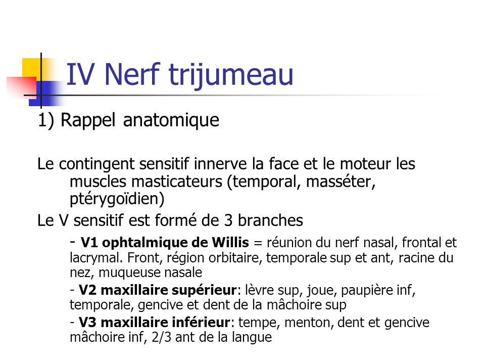 IV Nerf trijumeau 1) Rappel anatomique Le contingent sensitif innerve la face et le moteur les muscles masticateurs (temporal, masséter, ptérygoïdien)