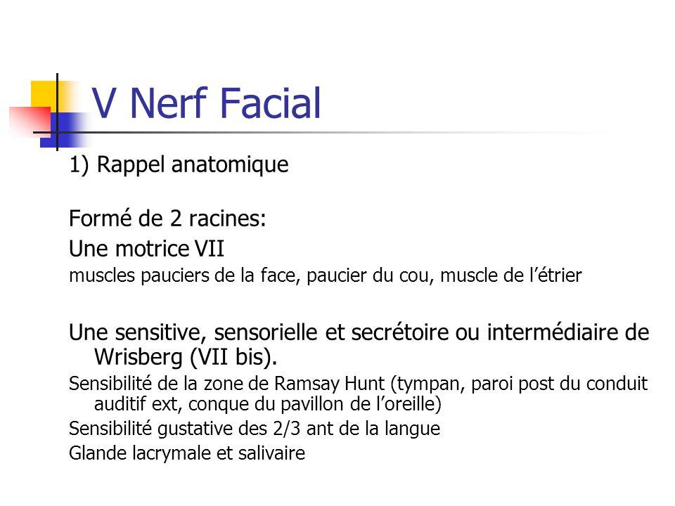 V Nerf Facial 1) Rappel anatomique Formé de 2 racines: Une motrice VII muscles pauciers de la face, paucier du cou, muscle de l'étrier Une sensitive,