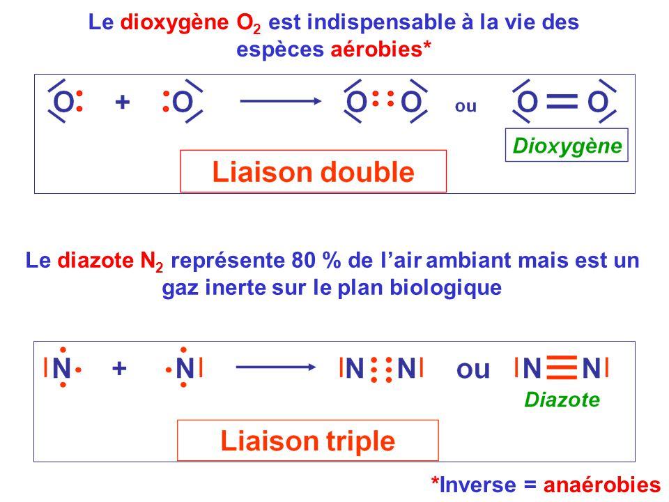 Le dioxygène O 2 est indispensable à la vie des espèces aérobies* *Inverse = anaérobies Le diazote N 2 représente 80 % de l'air ambiant mais est un ga