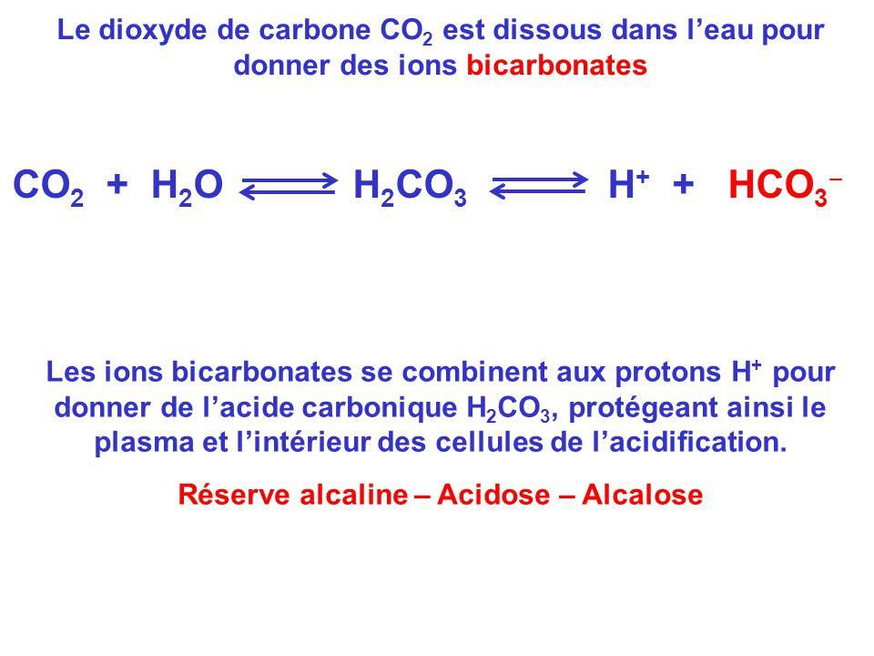 Le dioxyde de carbone CO 2 est dissous dans l'eau pour donner des ions bicarbonates CO 2 + H 2 O H 2 CO 3 H + + HCO 3 ‒ Les ions bicarbonates se combi