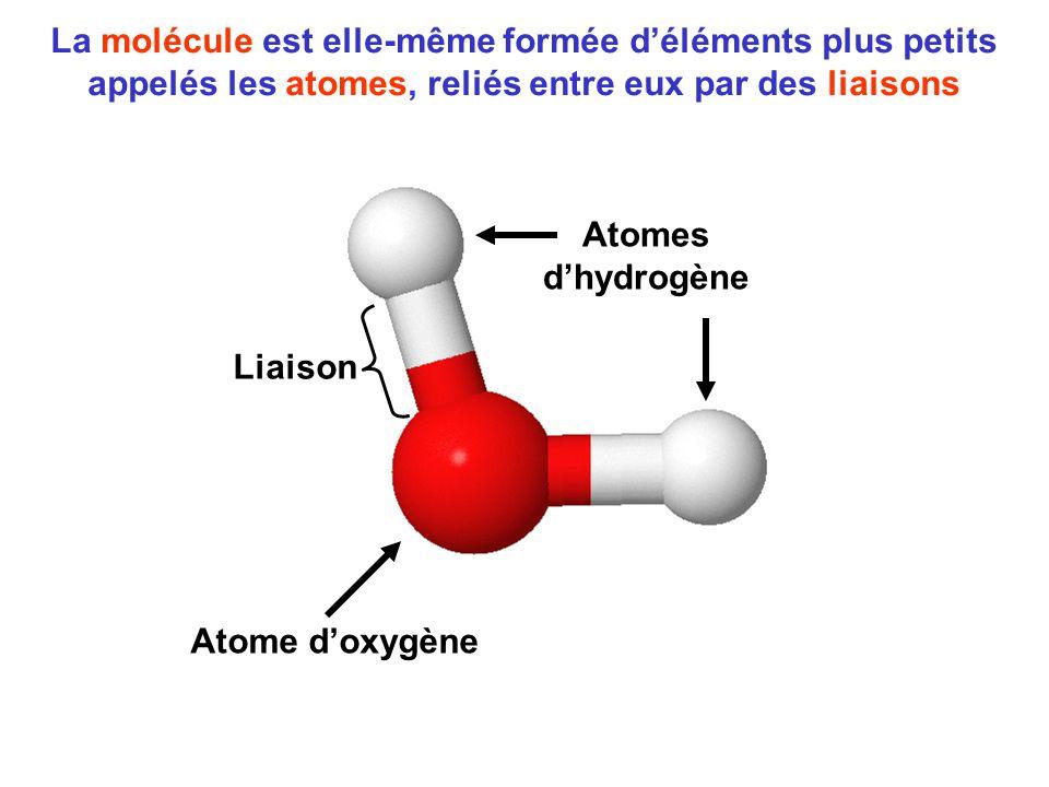 La molécule est elle-même formée d'éléments plus petits appelés les atomes, reliés entre eux par des liaisons Atome d'oxygène Atomes d'hydrogène Liais