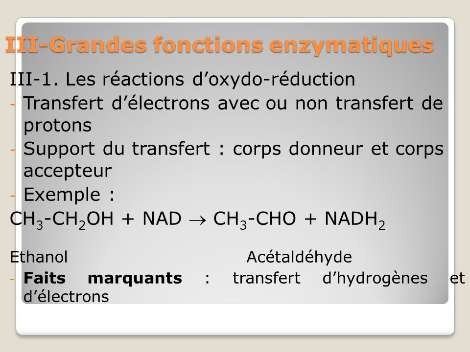 III-Grandes fonctions enzymatiques III-1.