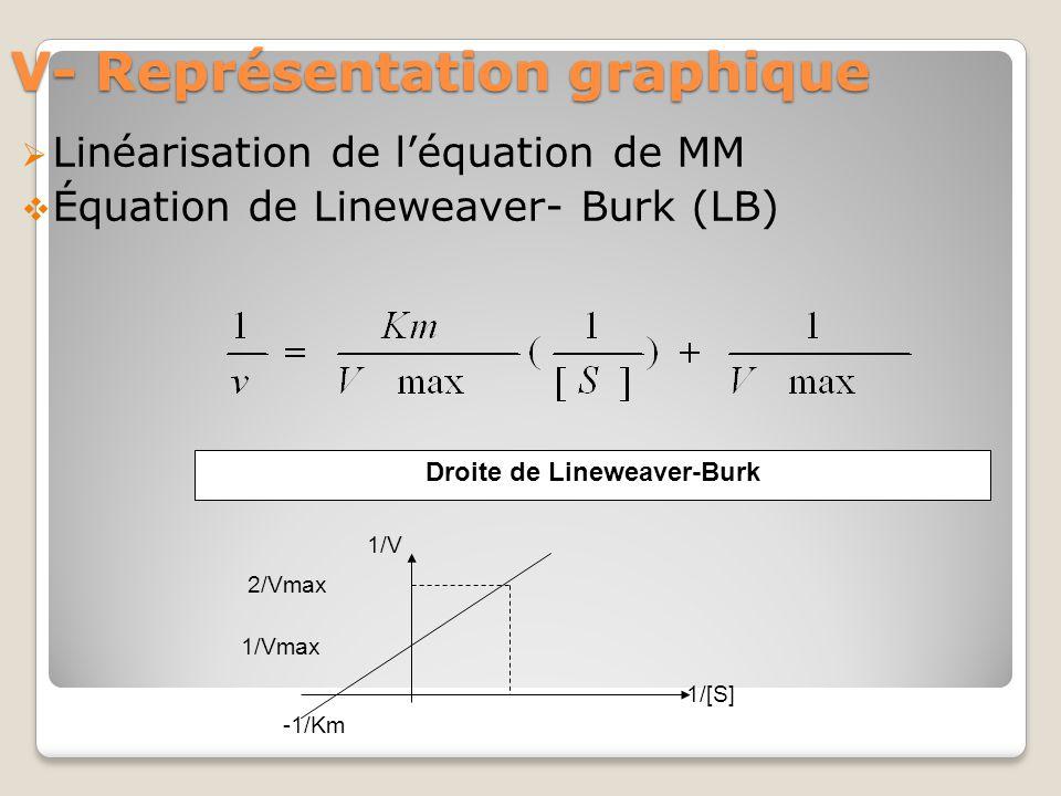 V- Représentation graphique  Linéarisation de l'équation de MM  Équation de Lineweaver- Burk (LB) -1/Km 1/Vmax 2/Vmax 1/V 1/[S] Droite de Lineweaver-Burk
