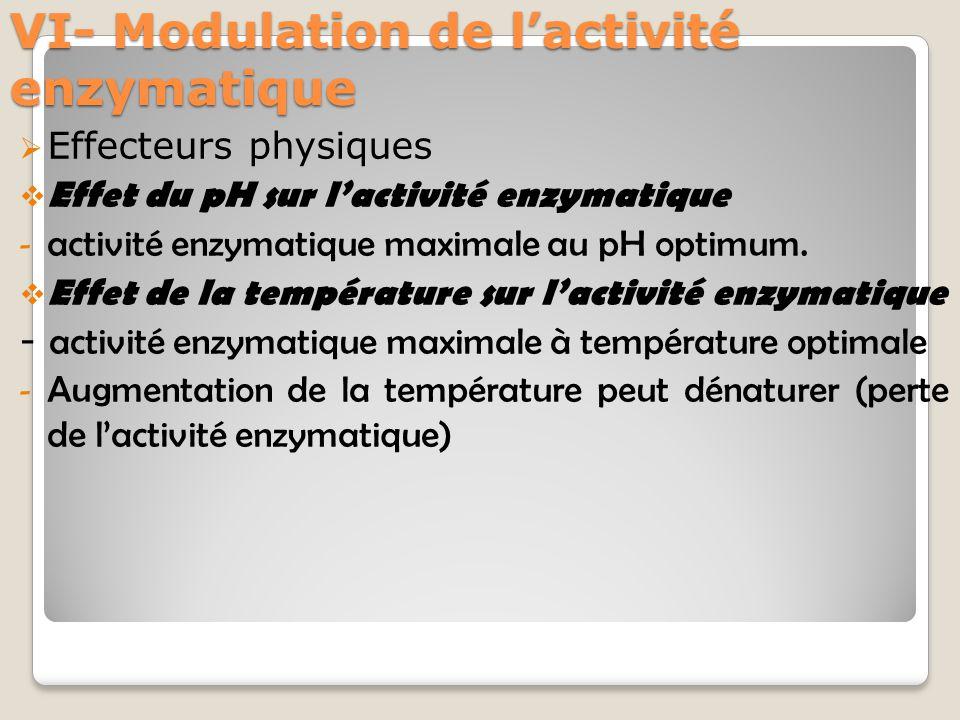 VI- Modulation de l'activité enzymatique  Effecteurs physiques  Effet du pH sur l'activité enzymatique - activité enzymatique maximale au pH optimum.