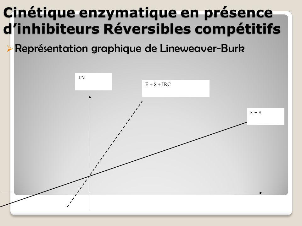 Cinétique enzymatique en présence d'inhibiteurs Réversibles compétitifs  Représentation graphique de Lineweaver-Burk 1/V E + S E + S + IRC