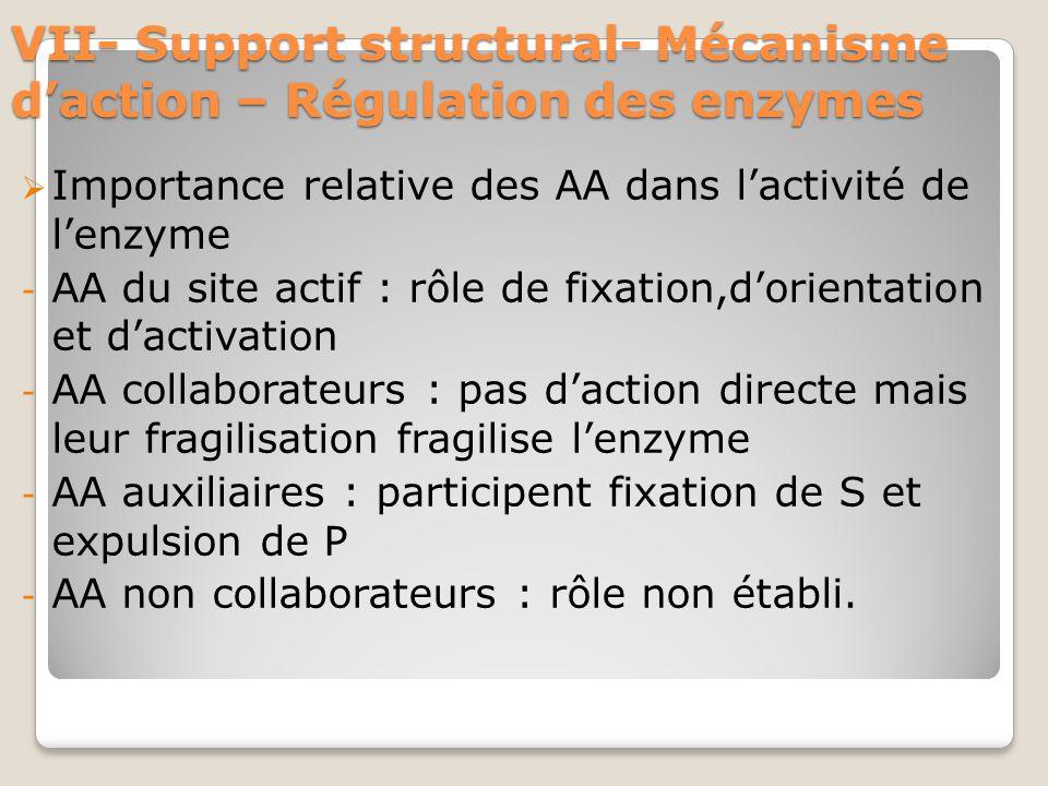 VII- Support structural- Mécanisme d'action – Régulation des enzymes  Importance relative des AA dans l'activité de l'enzyme - AA du site actif : rôle de fixation,d'orientation et d'activation - AA collaborateurs : pas d'action directe mais leur fragilisation fragilise l'enzyme - AA auxiliaires : participent fixation de S et expulsion de P - AA non collaborateurs : rôle non établi.