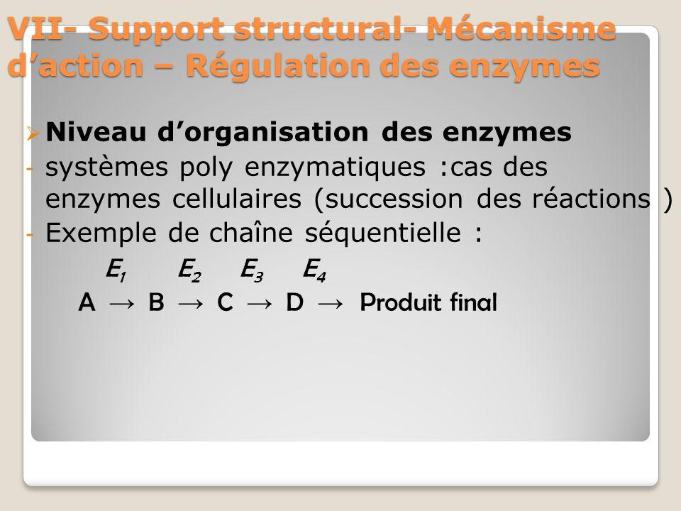 VII- Support structural- Mécanisme d'action – Régulation des enzymes  Niveau d'organisation des enzymes - systèmes poly enzymatiques :cas des enzymes cellulaires (succession des réactions ) - Exemple de chaîne séquentielle : E 1 E 2 E 3 E 4 A → B → C → D → Produit final