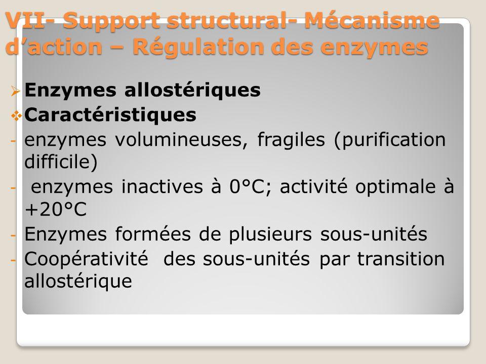 VII- Support structural- Mécanisme d'action – Régulation des enzymes  Enzymes allostériques  Caractéristiques - enzymes volumineuses, fragiles (purification difficile) - enzymes inactives à 0°C; activité optimale à +20°C - Enzymes formées de plusieurs sous-unités - Coopérativité des sous-unités par transition allostérique